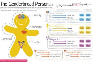 Genderbread person